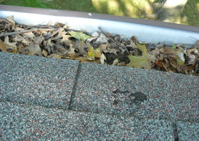 Leafs At Edge Of Damaged Shingles Roof