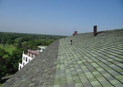 Green Tile Roof Overview