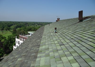 Green Colored Tile Roofing