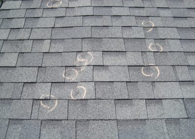 Shingle Roof With Multiple Damage Markings