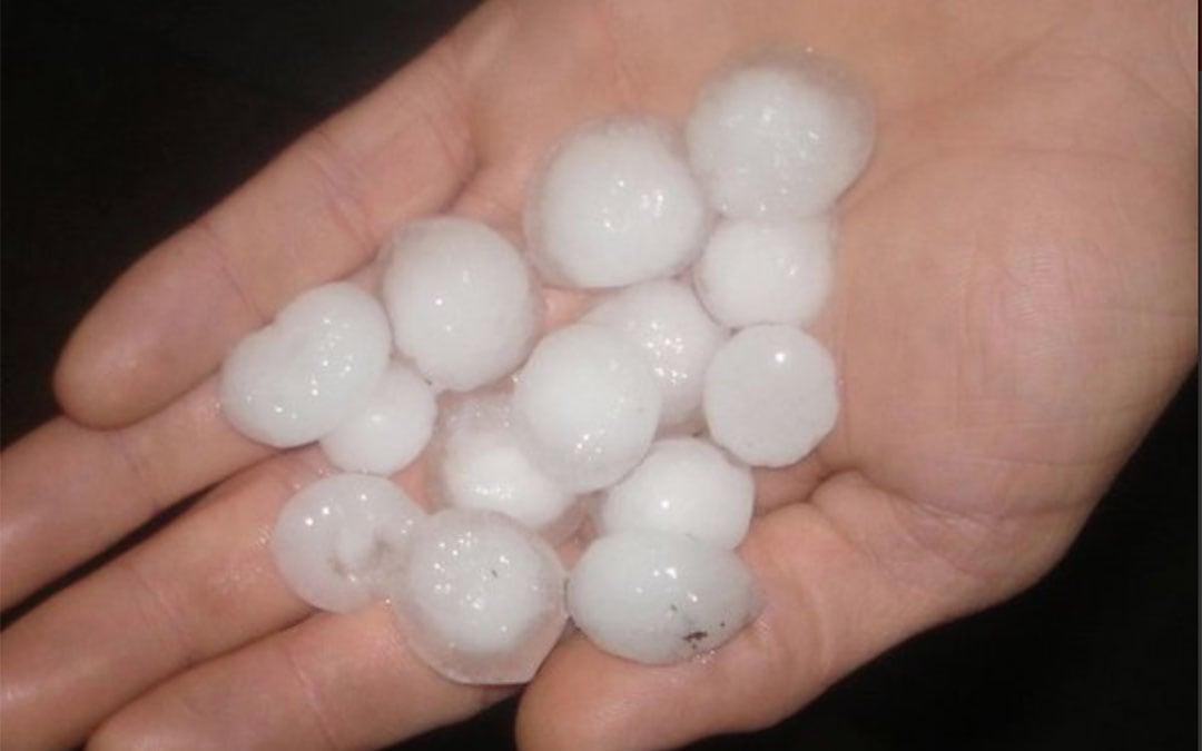a hand holding small pieces of hail
